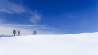 豪雪の資源化